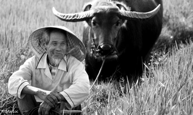 Farmer by Mai Loc