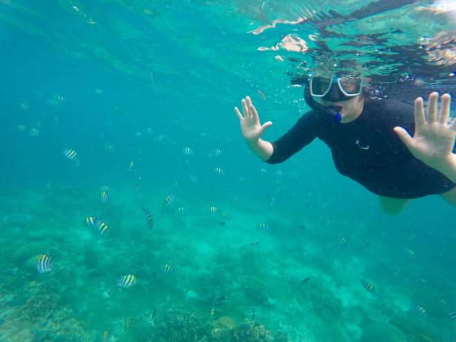 H Snorkeling