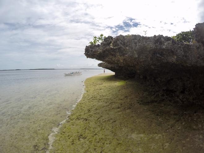 Island Atoll