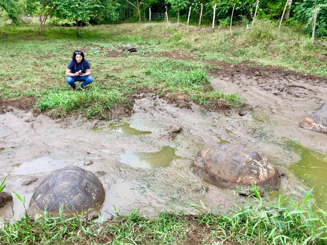 Hilcia with Galápagos Tortoises